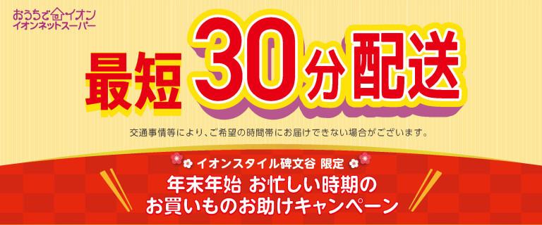 イオンネットスーパー 最短30分配送!