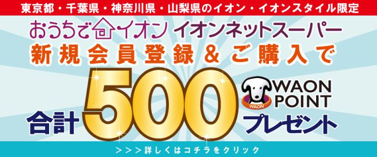 イオンネットスーパー 新規会員限定 最大500WAONPOINTプレゼント