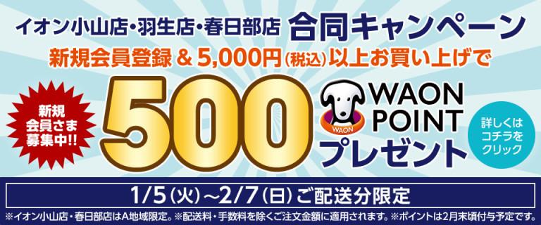 小山 NS新規500WAONCP