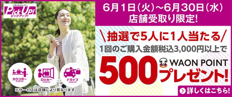 【店舗受取限定!】イオンネットスーパーPick Up! 500WAONポイント プレゼントキャンペーン